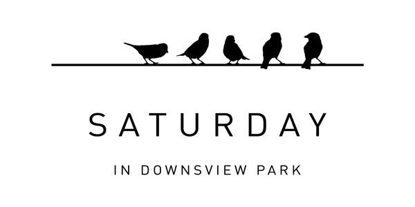 saturday downsview condos logo