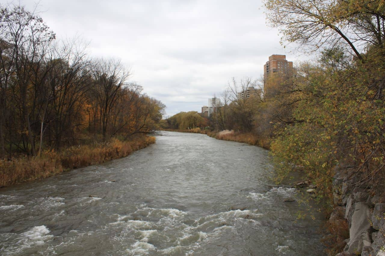 downstream view of humber river