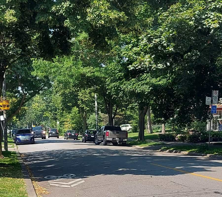 high park neighbourhood lined with large trees