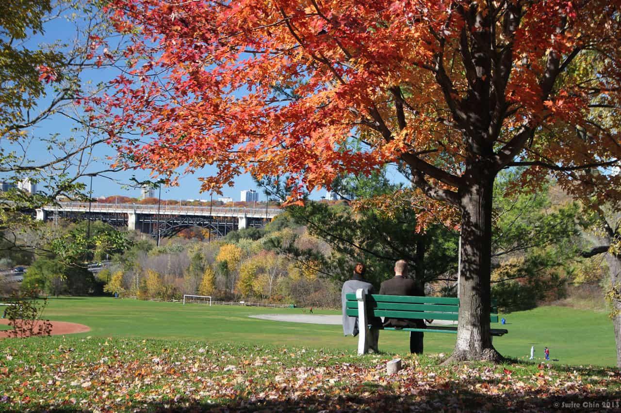park bench at riverdale park toronto