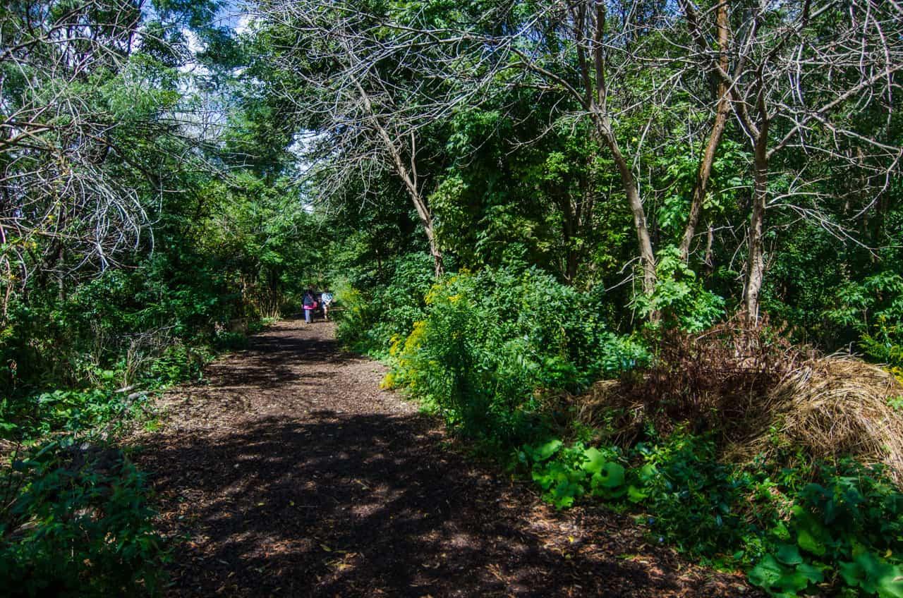 riverdale park east trail